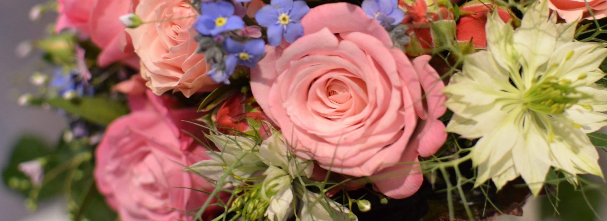 Top Ausbildung Florist